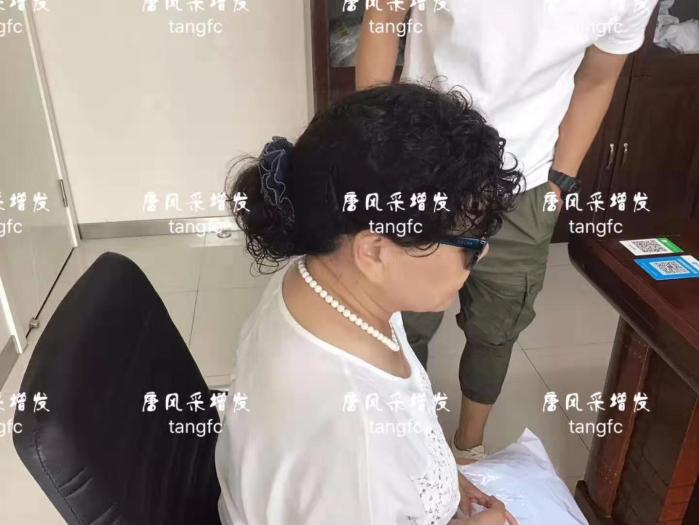 中老年女式假发套
